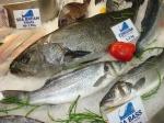 European Seafood Exposition 2008
