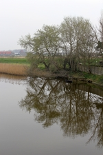 River IJzer, upstream of the sluices complex Ganzenvoet (Nieuwpoort, Belgium). 2014.03.31