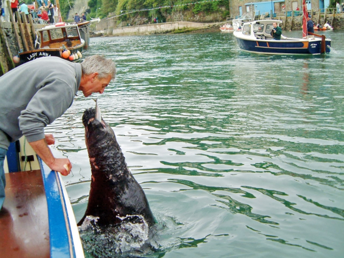 Local boatman and Nelson the seal
