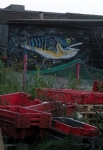 The second one is a wall of one of the 'boys ashore' huts which was painted for the Herring Fair last year. The Herring Fair went down well and many locals who rarely go to the Old Town came down and tried some freshly prepared delicacies.