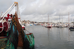 Coastal fisheries will survive only if it plays on another role than industrial fishing.  Saint-Vaast exhibition, France.