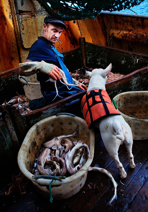 Carl and his dog Keta, at sea aboard the trawler 'Risten', whose home port is Le Guilvinec, France.  The boat is mainly fishing for Nephrops (Langoustine), but has a smaller by-catch of other species