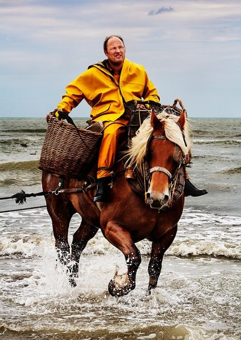 Xavier Vanbillemont is aan het vissen met zijn paard Byron.  Hij is een van de twaalf garnalenvissers te paard die Oostduinkerke nog rijk is