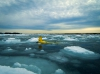 Slocum glider, author: Sean Whelan, Woods Hole Oceanographic Institution