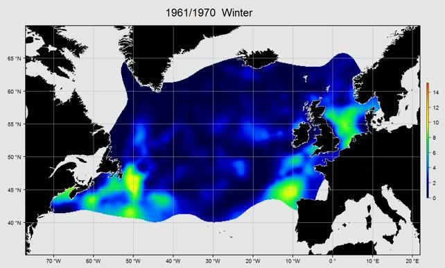 Total diatoms winter