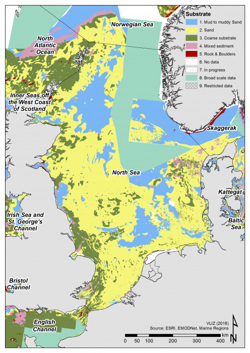 Seabed substrate in the North Sea