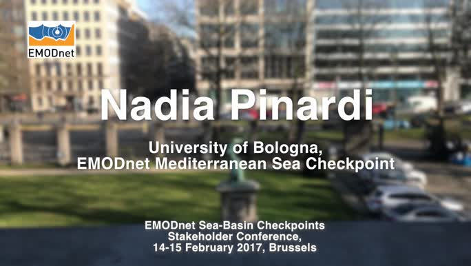 Nadia Pinardi, University of Bologna, on the outcomes of the EMODnet Mediterranean Sea Checkpoint