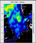 Abundance maps of marine birds and mammals in the North Sea
