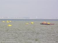 Aquacultuur op zee