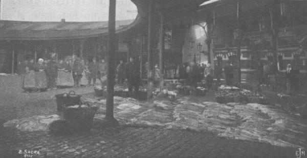 De Zuttere (1909, fig. 05)
