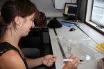 Ulrike Braeckman (UGent - Sectie Mariene Biologie) [cruise info]