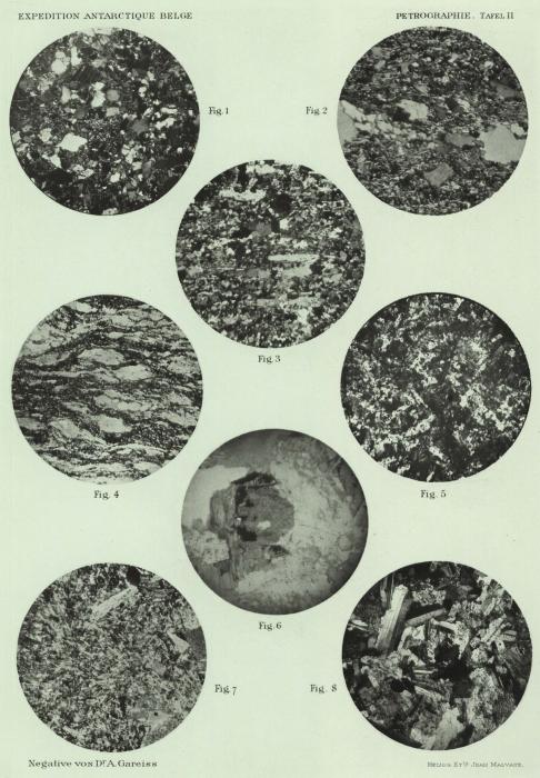 Pelikan (1909, pl. 2)