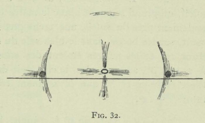Arctowski (1902, fig. 32)