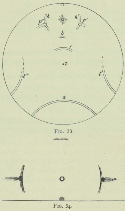 Arctowski (1902, fig. 33-34)