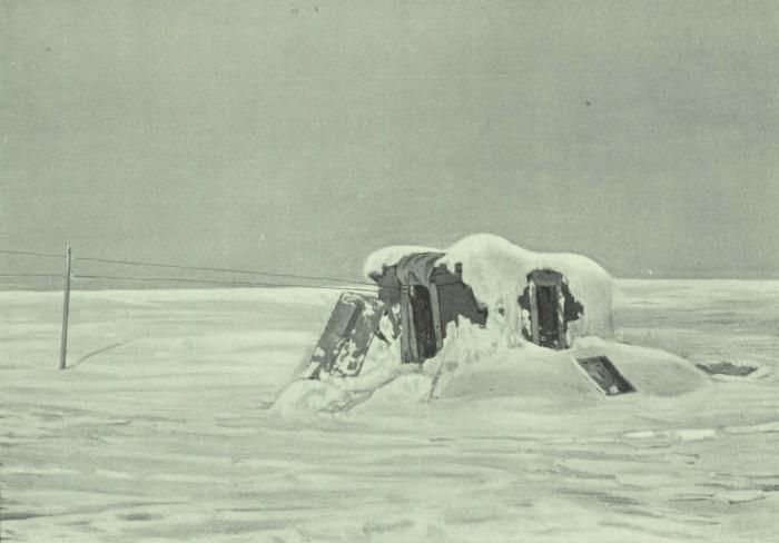 Lecointe (1901, pl. 5, foto 1)