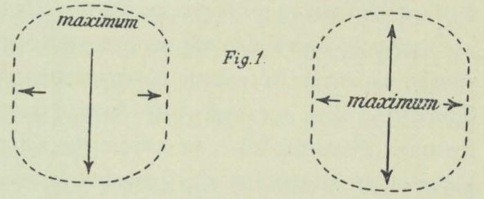 Dobrowolski (1903, fig. 01)