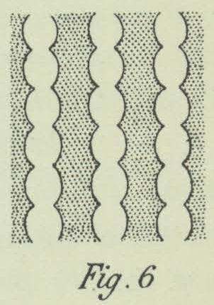 Dobrowolski (1903, fig. 06)