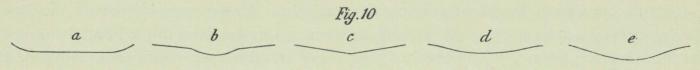 Dobrowolski (1903, fig. 10)