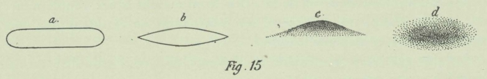 Dobrowolski (1903, fig. 15)