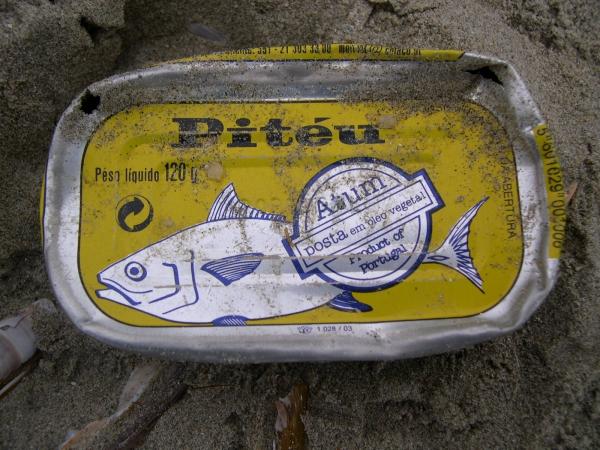 visblik uit portugal