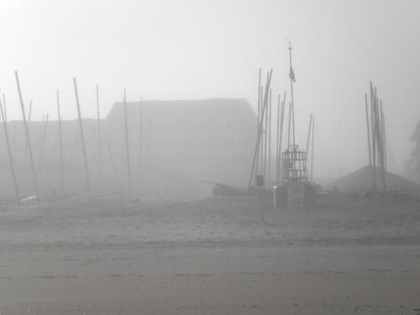 sycod in de mist