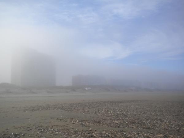 twenty one in de mist odk