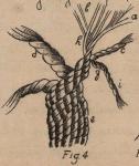 De Jonghe (1912, fig. 04)