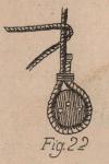 De Jonghe (1912, fig. 22)