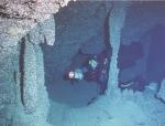 Trémies Cave, dark zone, with highly diverse fauna of encrusting invertebrates.