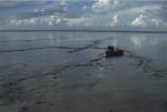 Vast soft-sediment tidal flats in Oosterschelde.