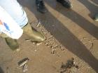 les op het strand, een oneindig zandbord om op te schetsen