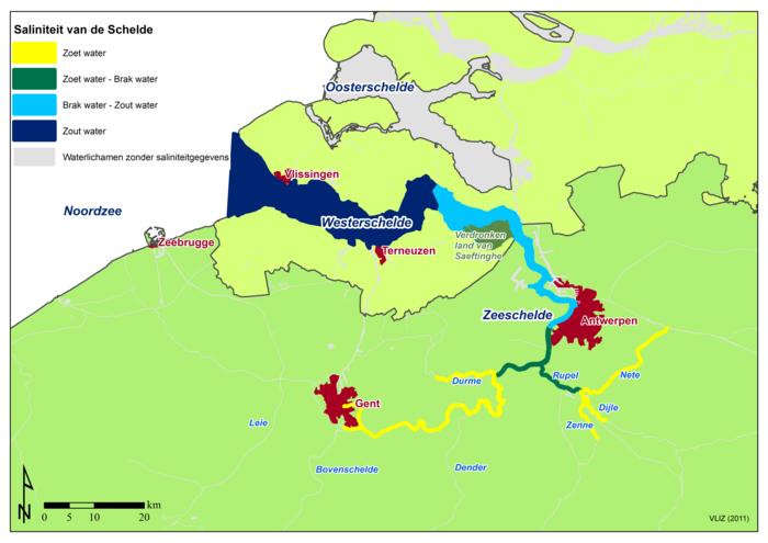 Salinity of the Scheldt